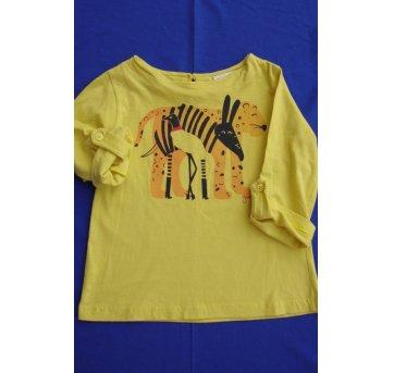 065-Camiseta Pantanal Green(0750)